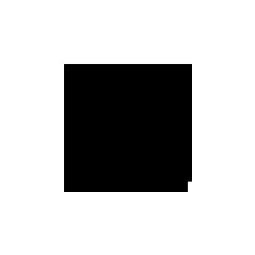 Todd Shelton logo